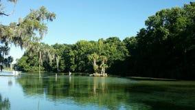 Opinión de la orilla del lago Foto de archivo