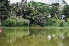 Opinión de la orilla del lago a lo largo de un parque recreativo Imágenes de archivo libres de regalías