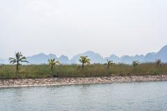Opinión de la palma de la bahía de Halong Imagenes de archivo