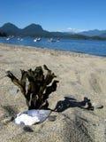 Opinión de la playa de Gibsons Foto de archivo libre de regalías