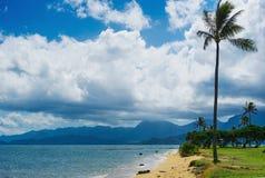 Opinión de la playa del parque de la playa con Imagen de archivo libre de regalías