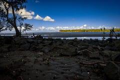 Opinión de la playa de Nudgee imagenes de archivo