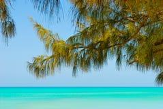 Opinión de la playa y del mar de Bahamas Foto de archivo