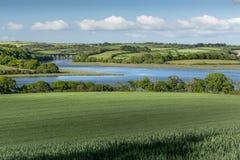 Opinión de la primavera, viaducto de Notter, río Lynher, Cornualles fotografía de archivo