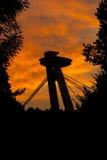 Opinión de la puesta del sol del parque de la ciudad en el puente SNP sobre el Danubio imágenes de archivo libres de regalías