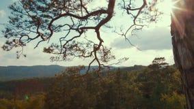 Opinión de la rotación de la cámara que se mueve hacia la luz del sol brillante en el top de las colinas de la montaña Paisaje as almacen de metraje de vídeo