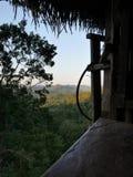 Opinión de la selva de una casa en el árbol Imagen de archivo libre de regalías