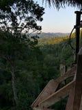 Opinión de la selva de una casa en el árbol Imágenes de archivo libres de regalías
