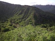 Opinión de la selva sobre Oahu, Hawaii fotos de archivo libres de regalías