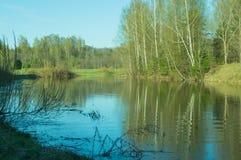 Opinión de la tarde del lago con la reflexión de árboles en el agua Fotografía de archivo libre de regalías