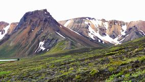 Opinión de la tarde de montañas hermosas con el lago, la colina rocosa y las flores metrajes