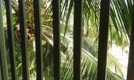 Opinión de la ventana Fotografía de archivo