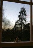 Opinión de la ventana del invierno Imagen de archivo libre de regalías