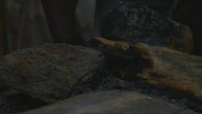 Opinión de madera ardiendo de los registros almacen de video