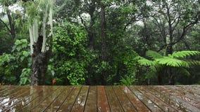Opinión de madera de la selva tropical del Decking