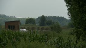 Opinión de madera del paisaje del granero almacen de metraje de vídeo