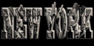 Opinión de Manhattan sobre Nueva York con alivio ilustración del vector