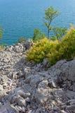 Opinión de mar adriático sobre la costa costa de Trieste Fotografía de archivo libre de regalías