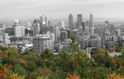 Opinión de Montreal - aislada imagen de archivo libre de regalías