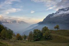 Opinión de niebla del valle Imágenes de archivo libres de regalías