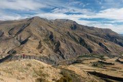 Opinión de Nueva Zelanda Fotografía de archivo