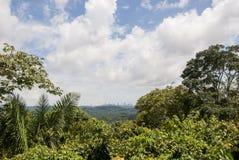 Opinión de Panama City imagenes de archivo