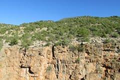 Opinión de pared de barranco con los árboles verdes en el top Fotografía de archivo