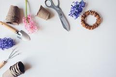Opinión de sobremesa de la primavera del jardinero con las flores del jacinto, los potes de la turba y los utensilios de jardiner Fotos de archivo