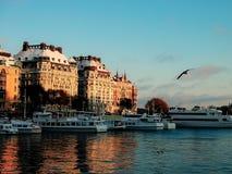 Opinión de Suecia - Estocolmo del invierno a las naves del agua en la puesta del sol Fotografía de archivo