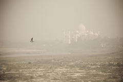 Opinión de Taj Mahal de la fortaleza de Agra Fotografía de archivo