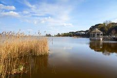 Opinión de Torre del lago Fotografía de archivo libre de regalías