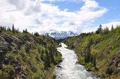 Opinión de Yukon fotografía de archivo
