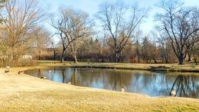 Opinión del área residencial y del lago imagen de archivo