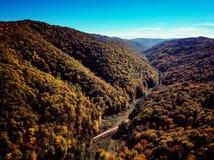 Opinión del abejón del bosque colorido imponente de la caída del otoño en la puesta del sol Fotografía de archivo