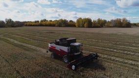Opinión del abejón a cosechar el campo con la máquina segadora de trabajo almacen de metraje de vídeo