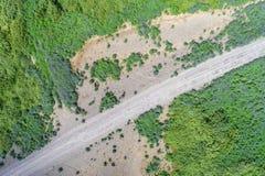Opinión del abejón del camino de la grava Foto de archivo libre de regalías