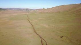 Opinión del abejón del paisaje mongol almacen de video