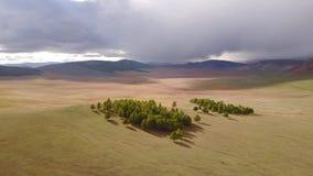 Opinión del abejón del paisaje mongol almacen de metraje de vídeo