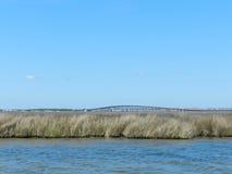 Opinión del agua del puente Fotos de archivo libres de regalías
