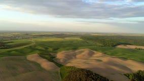 Opinión del aire sobre campos coloreados y bosques metrajes