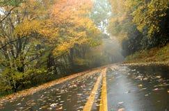 Opinión del asfalto de la mañana brumosa Imagen de archivo