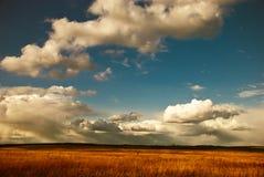 Opinión del borde de la carretera Imagen de archivo