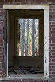 Opinión del bosque Imágenes de archivo libres de regalías