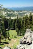Opinión del bosque del EL Dorado Fotos de archivo