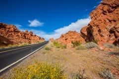 Opinión del camino en el parque nacional de Death Valley Imágenes de archivo libres de regalías