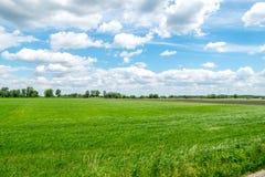 Opinión del campo con los campos verdes, el cielo azul, y las nubes blancas Fotografía de archivo