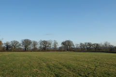 Opinión del campo de un campo verde fotos de archivo