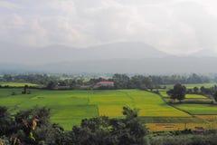 Opinión del campo del arroz desde arriba de la montaña laos Fotografía de archivo libre de regalías