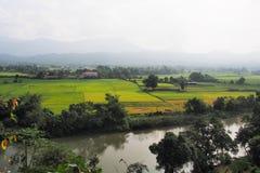 Opinión del campo del arroz desde arriba de la montaña laos Imagen de archivo libre de regalías