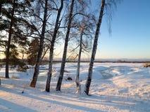 Opinión del campo del invierno sobre puesta del sol Fotografía de archivo